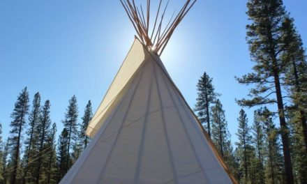 Meet The Artist, Randy Nelson 2 Feathers Tipi
