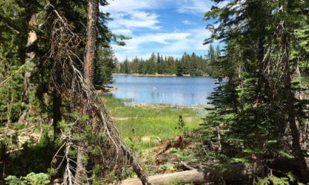 Wandering our local Caribou Wilderness to Jewel Lake