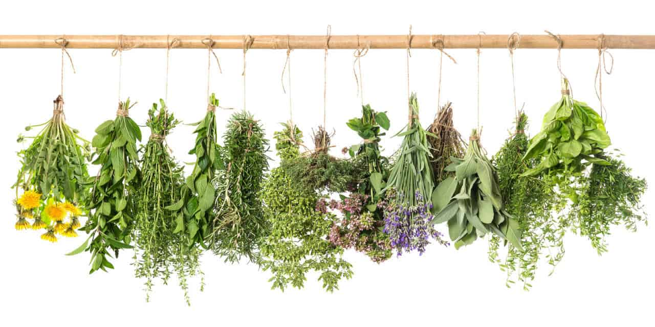PLANT AN HERB GARDEN – Make a Soothing Herbal Wrap