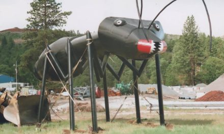 Hat Creek CA: Alien Research, Giant Metal Bugs Down the Road