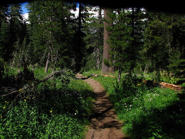 Lost Trail Lodge  +1.530.320.9268 Remote Lodge Truckee CA, hike to lodge NorCal