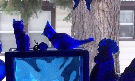Collection Showcase Cobalt Blue Glass