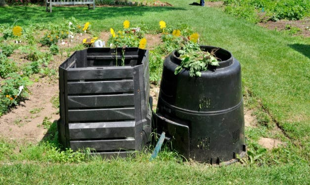 Composting-Going Green in the Garden