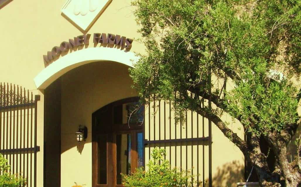MOONEY FARMS – Chico CA, Jewel Tucked A Little Off The Beaten Path