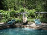 Grape vines around the pool Grace Lake Resort
