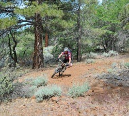 Trek The Trails To Susanville Ranch Park Trails – Mountain Bike, Hiking Trails