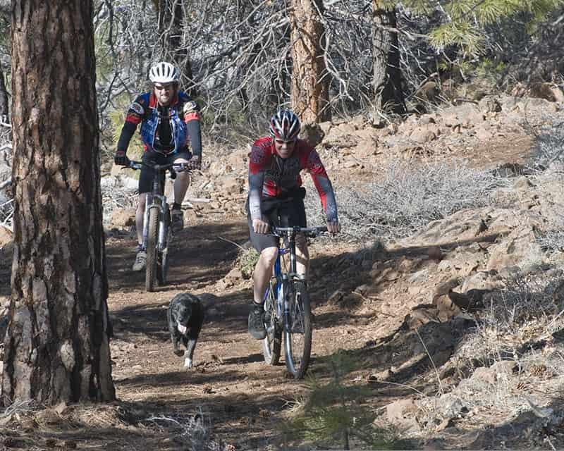 Trekking Trails in Susanville