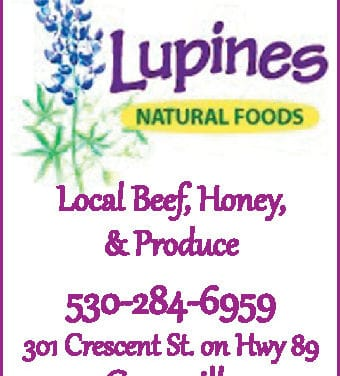 Lupines Greenville Ca 530-284-6959 Natural Foods, Health Food Store WebDirecting.Biz