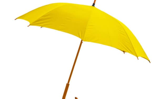 GOLDEN UMBRELLA SENIOR ADVOCATE VOLUNTEERS NEEDED