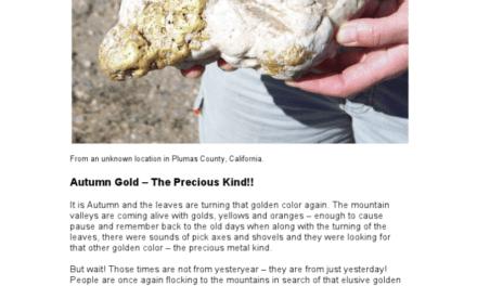 Autumn Gold, The Precious Kind
