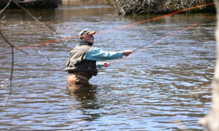 Fly Fishing Casting Basics  Courtesy of Takemefishing.org