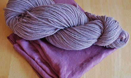 Dyeing With Blackberries