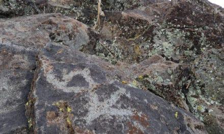 Belfast Petroglyphs
