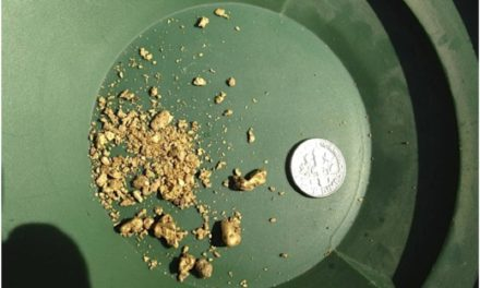 Tertiary Placer Gold!!