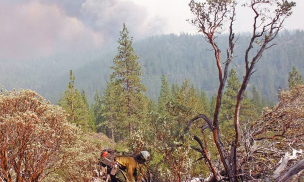 Fighting Aggressive Wilderness Fires: Hot Shots