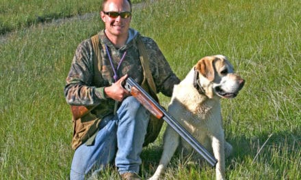 Upland Bird Hunting in Beautiful Sierra Valley