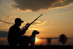 Many Westwood residents hunt.
