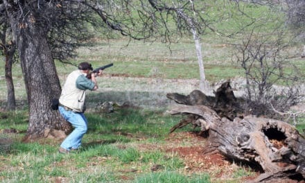 The NorCal Region Abounds in Hunting Opportunities