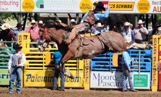 The Cowboy Way Annual Red Bluff Round-Up Gallops into Red Bluff