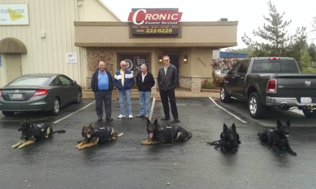 Extra Protection for Redding's Furry Five Canine Cops