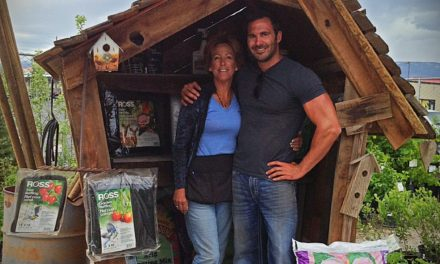 Meet The Artist C.J. & Lorrie Sanders Garden Gnome Homes