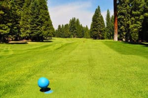 Lake Almanor West Course