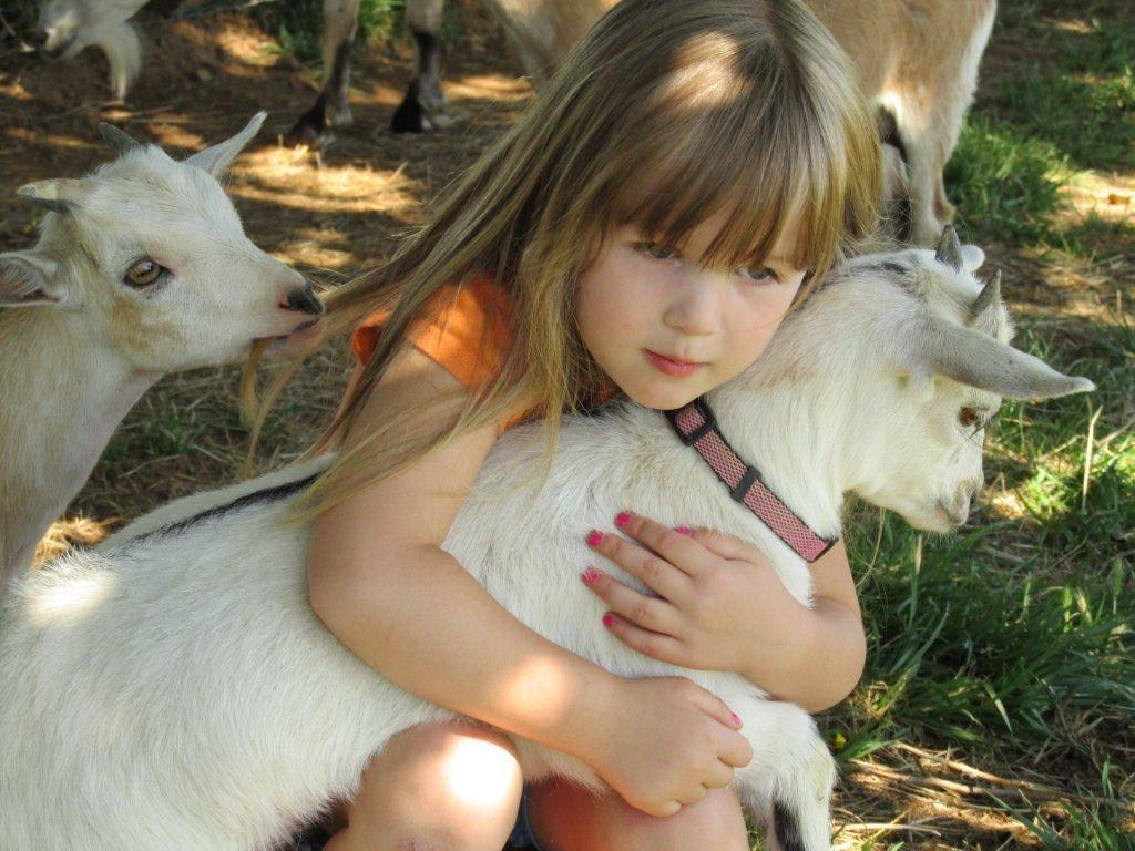 Trading in Your Lawnmower for a Goat? | Mountain Valley Living