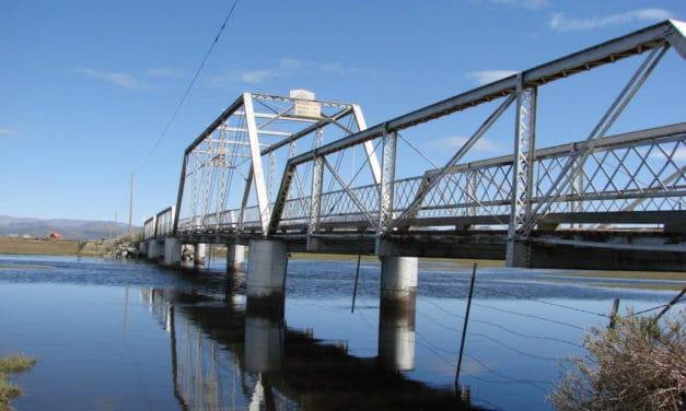 Birds, Beauty and an Old Steel Bridge