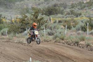 honey lake rider 2