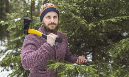 $10 Christmas Trees Choose Yours In The National Forest