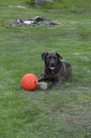 Tank with ball