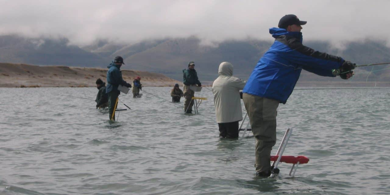 Ladder Fishing at Pyramid Lake