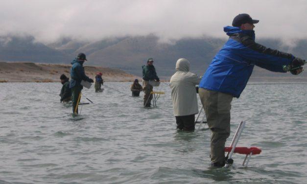 Ladder Fishing at Pyramid Lake