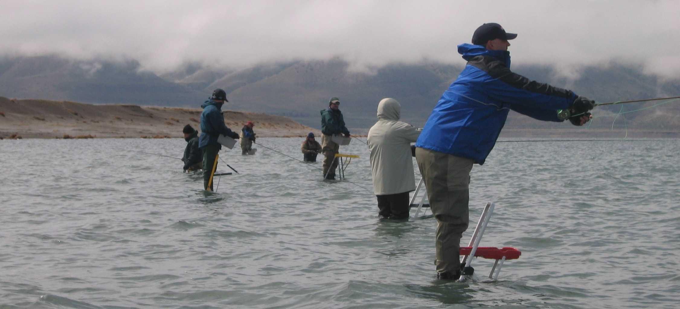 Ladder fishing at pyramid lake mountain valley living for Fly fishing nevada