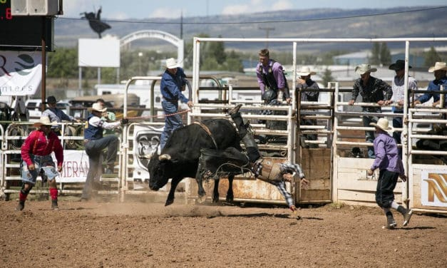 Rodeos, Reins and Ropes