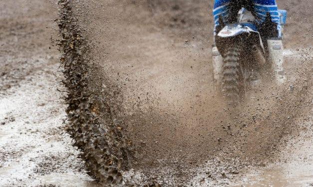Ridin' Wild- Racing Schedules