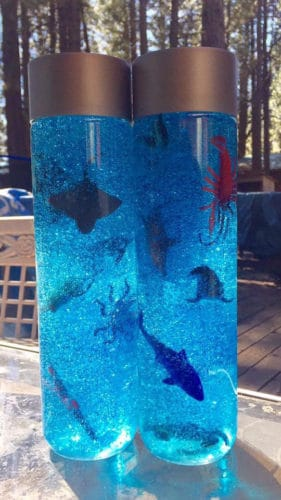 Discovery Bottle Craft