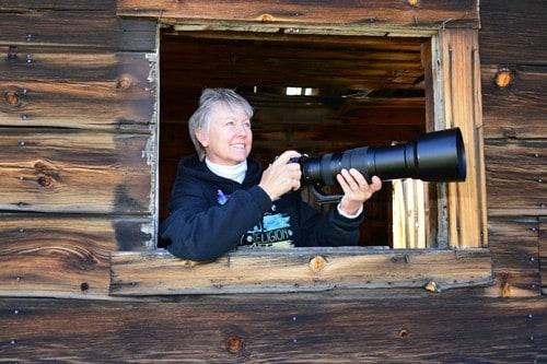 Looking Out My Back Door Wildlife Photographer Jan Ramelli