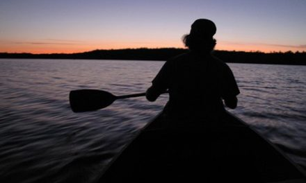 Shining A Light On Night Time Activities- Under The Full Moon