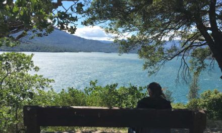 Road Trip To Whiskeytown National Recreation Area