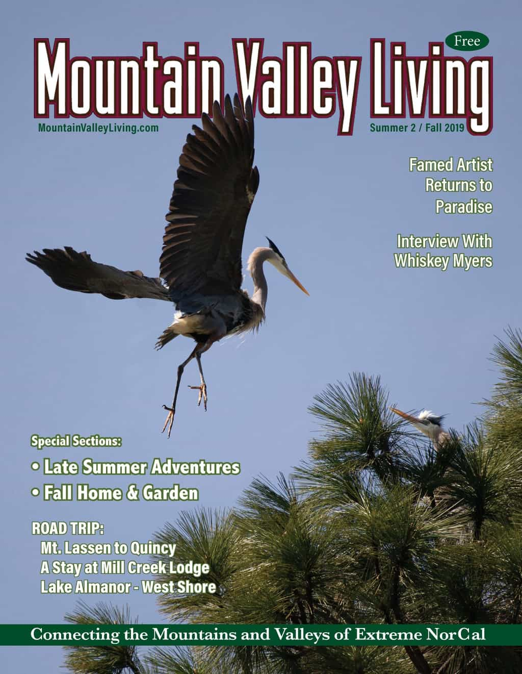 link to Summer 2 2019 MVL Magazine